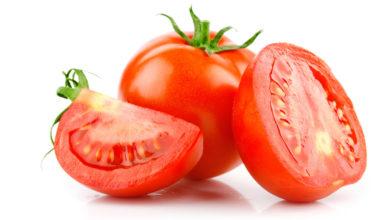 semente-de-tomate